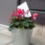 valkommen-blomma-hogvakten